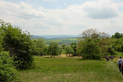 2015-05-24 Weimar Goethewanderweg 0140.jpg