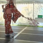 Single Dancer, Sachiyo Ito and Company, Branch Brook Park Cherry Blossom Festival