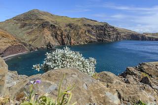 2015_Madeira_313