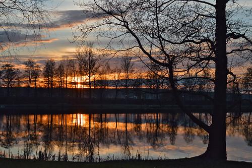 trees sunset sky sun sunlight lake nature water colors clouds suomi landscape evening spring nikon colorful flickr maisema vesi ilta waterscape järvi auringonlasku aurinko nikond3200 kevät puut taivas heijastukset goldenmoment d3200 järvimaisema