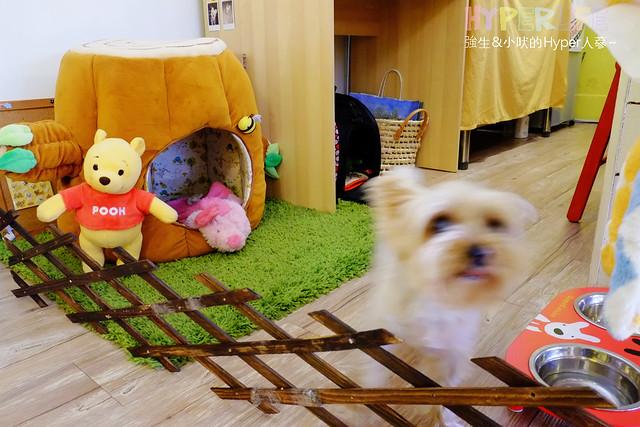 17111094747 988fb7a0eb z - 好逗Food.Cafe.Good Dog,小清新少女風咖啡店~帕尼尼不錯吃喔!