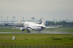White Airlines