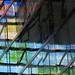 Z/W - Kleur (live in technicolor) by JaapFoto