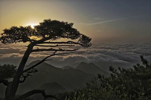 trees sunlight nature clouds sunrise canon river rocks july 三清山 mountsanqing