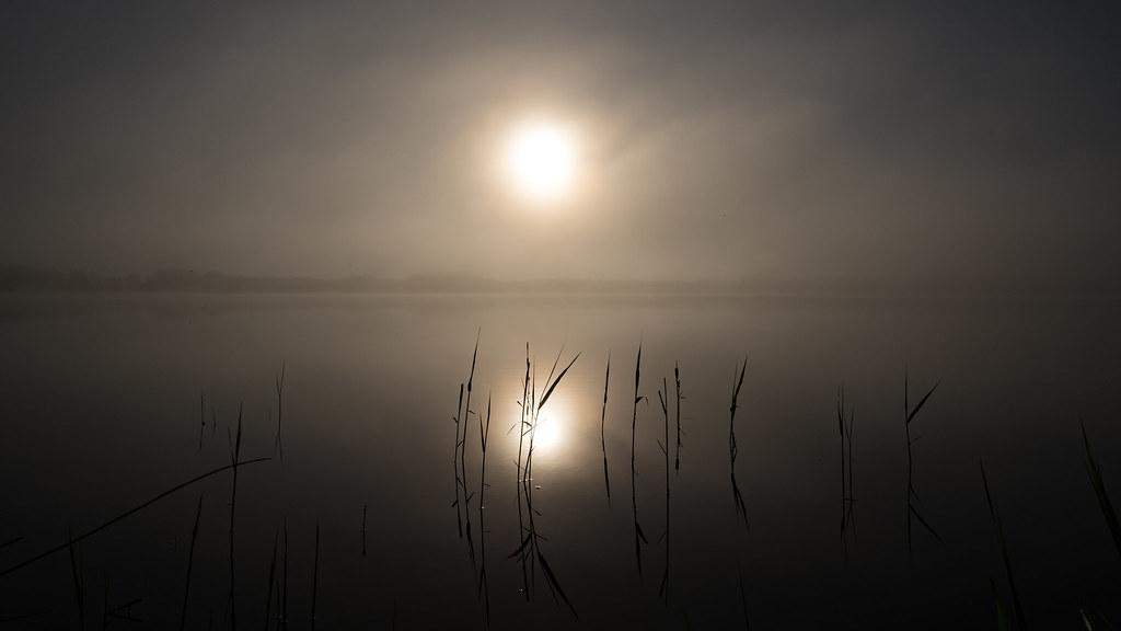 Lakescape mist