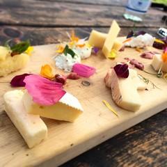 #visioni #food #formaggio #malga #dolomiti #noi #pausapranzo @dovola