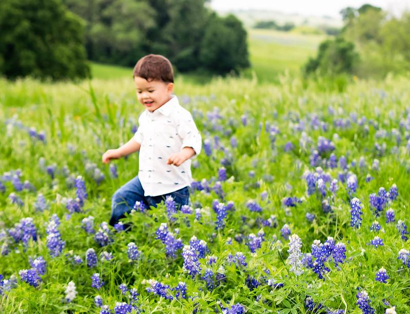 cute & little blog   petite fashion   ennis texas bluebonnets 2015