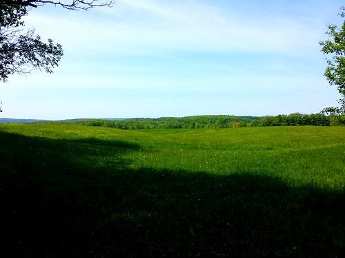 Southern Meadows, Knox Farm State Park, East Aurora, NY