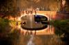 #Toulouseenvues Pont de Toulouse
