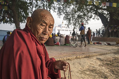 Tibetan Lama in Lumbini