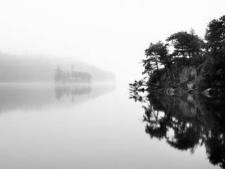Calm River And Fog