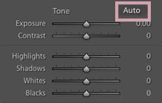 Lightroom basic tone