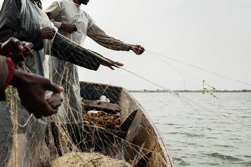 剛果維龍加國家公園的愛德華湖。(來源:Brent Stirton / WWF-International)