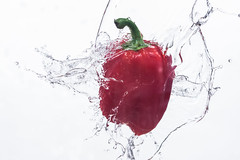 Paprika In water on a white background