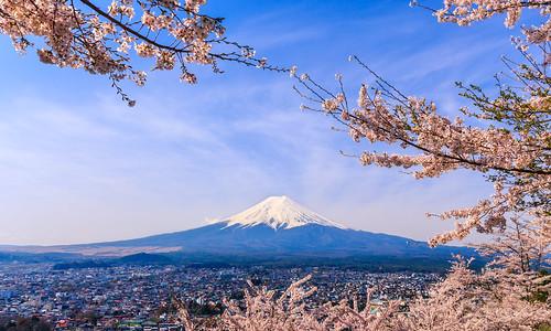 japan spring shrine fuji outdoor mount mountfuji cherryblossom sakura yamanashi arakurasengen