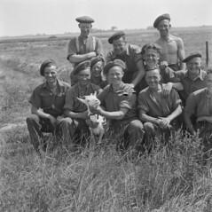 Canadese soldaten helpen Nederlandse boeren, 1945   Canadien soldiers assisting Dutch farmers, 1945   Des soldats canadiens assistent des fermiers néerlandais, 1945