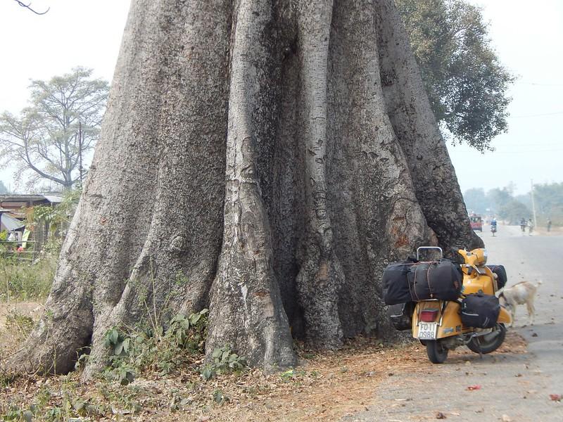 150223 Da Silicudi a Guwahati a Dimapur (21) (2304 x 1728)