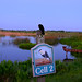 Wetlands Greeter