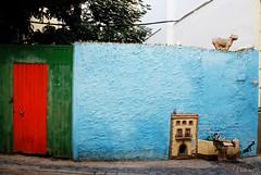 La casa de los Gatos. Valencia. Spain