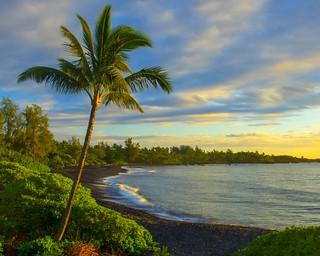Image of Waikoloa Beach. morning light sky tree beach nature water beautiful clouds hawaii bay soft maui palm hana