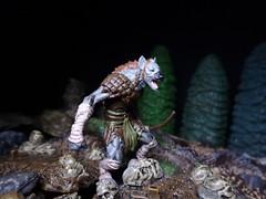 Gnoll Warrior