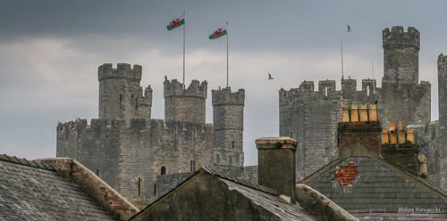 uk red castle wales dragon north northern altstadt burg drache castell caernarfon roter nordwales
