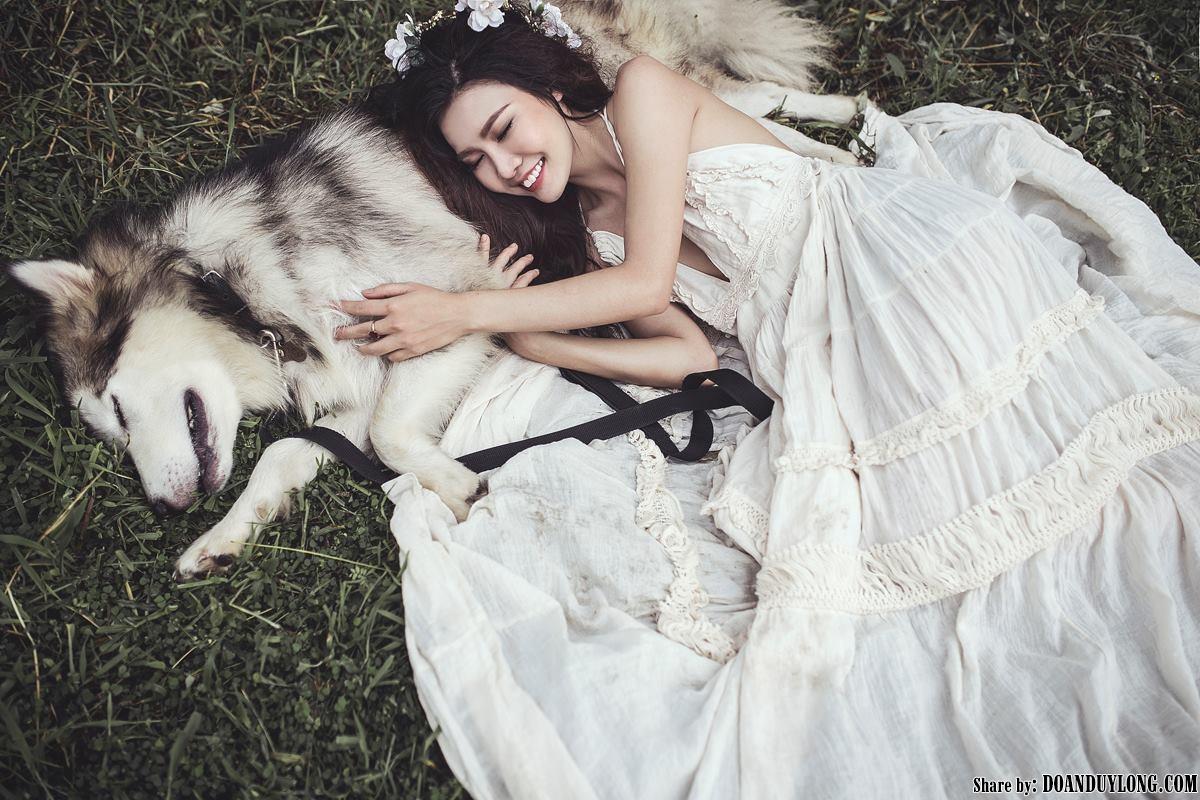 Share stock thiên thần và chú chó Alaska