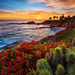 Treasure Island Sunset by Tom.Bricker