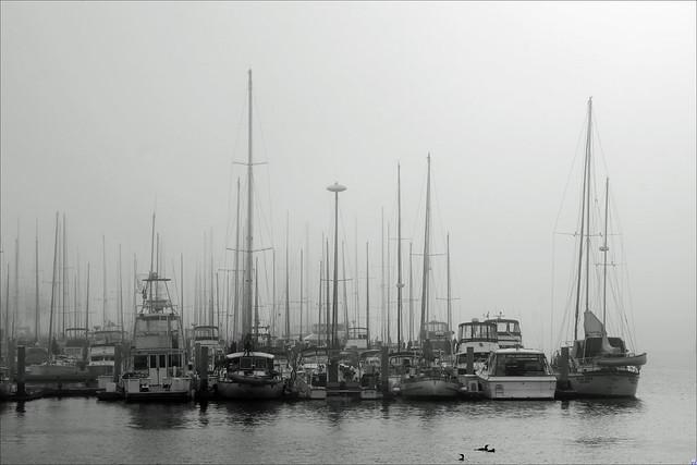 Marina del Rey, CA (masts)