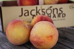 pluot(0.0), plant(0.0), peach(1.0), produce(1.0), fruit(1.0), food(1.0), nectarine(1.0),