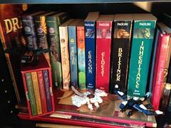 Three Bookshelf Dragons