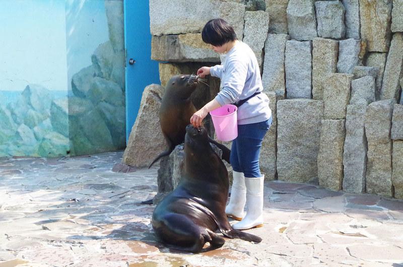 toomilog-edogawaku_zoo025