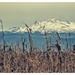 Nieve por JADE soulrush