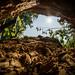 . : into the sun : . by sven.dressler