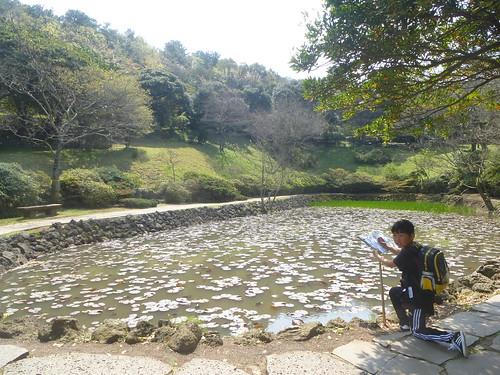 Co-Jejudo-Jeju 2-Halla Arboretum (6)