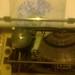 Trabajando con mi maquina de escribir by elartistadelamaquinadeescribir