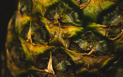 (335/365) Pineapple Macro