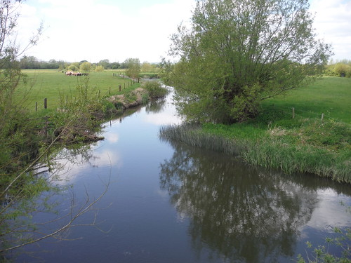 Thame River, from Ickford Bridge