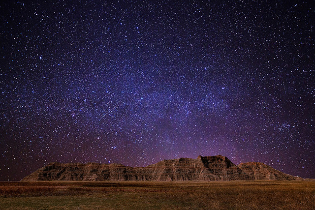 wild_stars1b