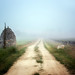 farm road in the fog, provence by jody9