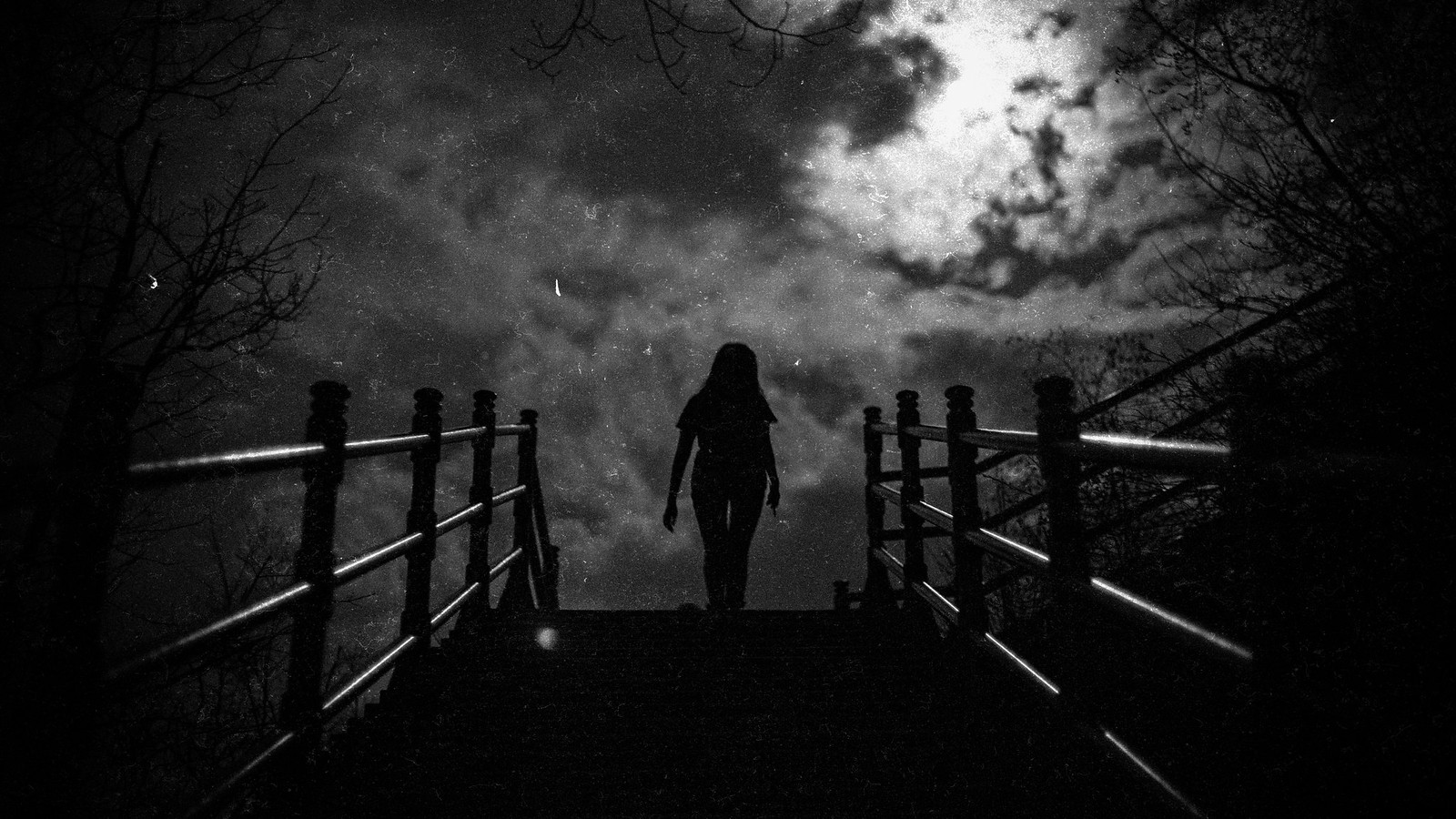 104/365 Night walk