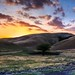 Sunset @ Rolling Hill , Livermore by Liping Photo