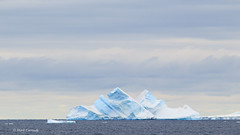Iceberg in the Gerlache Strait, Antarctica