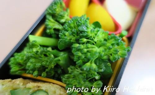お弁当、2016-5-13、蒸しブロッコリー