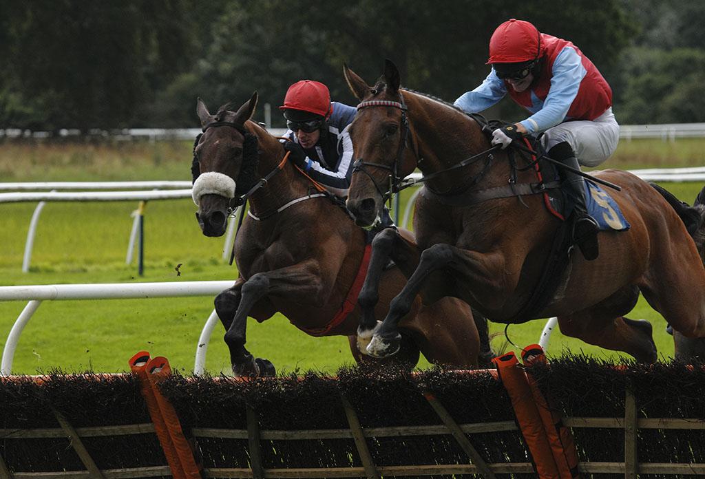 National-Hunt-Horse-Racing-A005