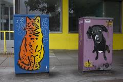 Cat and dog: Street art, Wood St, Cardiff