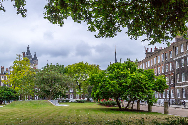 Open Garden Squares 2015 - 2314.jpg