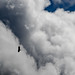 Buzzard in the Clouds by Michael Bateman