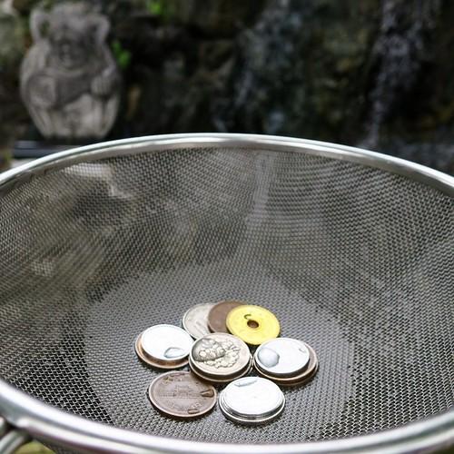 お金を洗った。増えるかと思ったけど、お賽銭でなくなった。