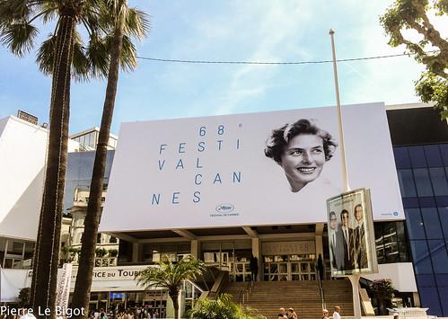 Cannes - Festival du Film 2015